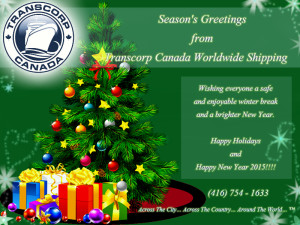 Transcorp 2014 Holiday Card